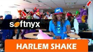 Harlem Shake en Softnyx